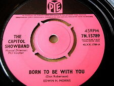 "THE CAPITOL SHOWBAND - BORN TO BE WITH YOU  7"" VINYL"