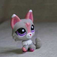 Grey Pink ears Little Wolf LPS mini Action Figures Littlest pet shop #1921