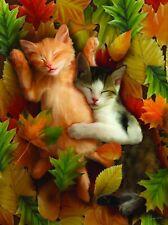 Autumn Nap 1000 Piece Puzzle - Tom Wood
