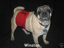 1 ULTIMATE Dog Belly Band Diaper Wrap XS Red Cotton Reusable