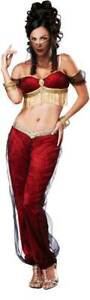 Sexy Genie Girl Belly Dancer Harem Servant Halloween Costume Outfit Adult Women