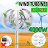4000W 12V 24V Lantern Wind Turbine Vertical Axis Power Energy Set Auto Windward