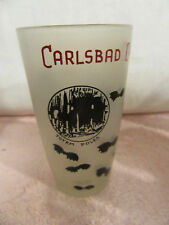 "Vintage ""Carlsbad Caverns National Park, N.M."" Drinking Glass - 5"" Tall"
