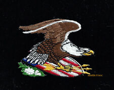BALD EAGLE USA SHIELD ARROWS HAT PATCH PIN UP US ARMY MARINES NAVY AIR FORCE WOW