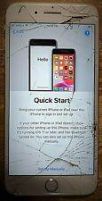 Apple iPhone 7 Plus - 128GB - Rose Gold A1784