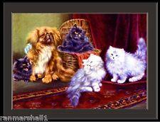 English Print Pekingese Dog Persian Cat Art Poster Picture
