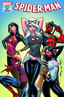 SPIDER-MAN 17 deutsch VARIANT Black Cat SCOTT CAMPBELL  lim.333 Ex. (Amazing 18)