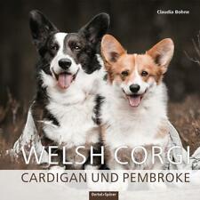 Welsh Corgi Cardigan und Pembroke von Claudia Bohne (2021, Gebundene Ausgabe)