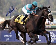 ZENYATTA PLAQUE HORSERACING HORSE RACING TURF