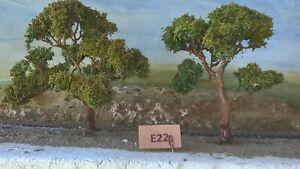 AUSTRALIAN MODEL GUM TREES  HO  OO  Lot E22
