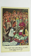 1950s Comic Postcard Sultan Harem Yashmak Accountant CPA HMRC IRS Tax Return