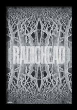 RADIOHEAD KING OF LIMBS 13x19 FRAMED GELCOAT POSTER MUSIC ROCK ENGLAND PUNK GIFT