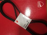 Cinghie Distribuzione Ducati Hyperstrada 821 - 73740252A Ducati Toothed Belt