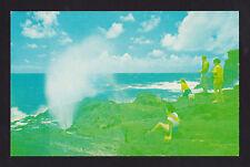 c1958 Nani Li'i people view the Blow Hole Geyser Oahu Hawaii postcard