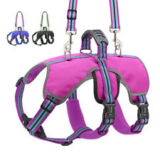 No Pull Dog Harness Reflective Mesh Vest and Leash with Handle Outdoor Adventure