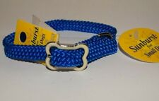 "New Dog Collar Coastal Pet Sunburst Small Dogs Bone Buckle 3/8"" x 12"" Blue"
