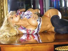 "Nicole Coco Austin Sexy Hot Model Wall 32"" x 24"" Poster C008"
