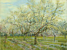 The White Orchard by Vincent Van Gogh, Giclee Canvas Print, in various sizes