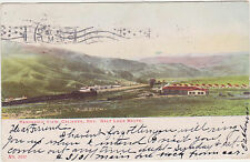 Caliente,Nevada,Panorama,Salt Lake Route,Lincoln County,Used,Flag Cancel,1909