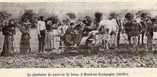 72 ROUEZ EN CHAMPAGNE PLANTEUSE DE POMME DE TERRE IMAGE 1910 OLD PRINT