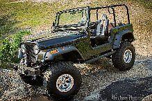 Family Roll Cage Kit Jeep CJ7 Roll Bar Kit AMC 1982 1983 1984 1985 1986 CJ7