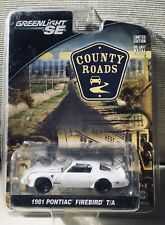 GREENLIGHT SE COUNTY ROADS 1981 PONTIAC FIREBIRD T/A LIMITED EDITION (NIB)