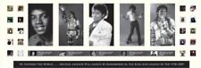 New Michael Jackson Signed Panoramic Limited Edition Memorabilia Framed