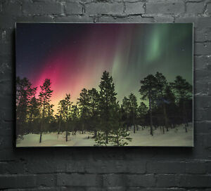 ANY SIZE Wall Art Glass Print Canvas Picture Aurora Borealis Night Forest p6657