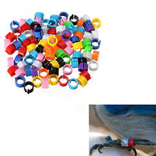 100X Chicken Pigeon Leg Poultry Dove Bird Chicks Duck Parrot Clip Rings Band