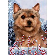 Winter House Flag - Norwich Terrier 15152