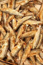 1kg di Pesci secchi liofilizzati. Mangime per tartarughe d'acqua,pesci predatori