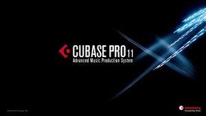 Steinberg Cubase 11 Pro w/ USB-eLicenser & Wavelab Cast