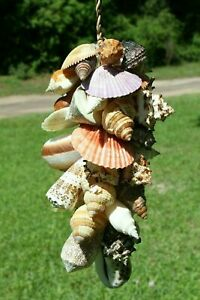 """Fathers Day Gift Large Seashell Cluster Hanging Decor, Handmade, 15""""+, G-04"""