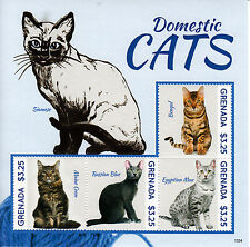 Grenada 2013 MNH Domestic Cats 4v M/S Pets Bengal Maine Coon Russian Blue Stamps