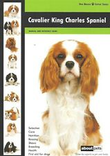 NEW BOOK Cavalier King Charles Spaniel by About Pets. DOG BOOK