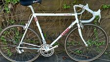 Trek 660 True Temper Lugged Road Bicycle Bike Campagnolo Group Set USA Italy