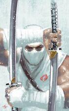 GI JOE A REAL AMERICAN HERO COMPLETE SILENCE #1 DELL'OTTO VIRGIN VAR IDW COMICS