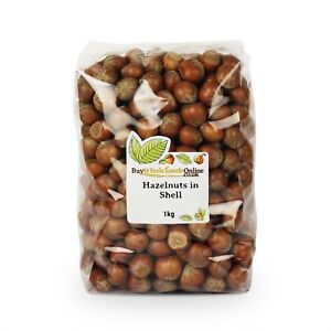 Hazelnuts in Shell 1kg   Buy Whole Foods Online   Free UK Mainland P&P