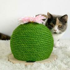 Cactus Scratching Poster with Flower Decor Cat Ball Scratch Wood Board Cat Toy