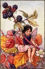 The Blackberry Fairy: Cicely Mary Barker : circa 1918 : Art Print