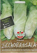 """Sperli  ZICHORIENSALAT """" ZUCKERHUT """" lagerfähig Salat Samen Gemüse Sämereien"""
