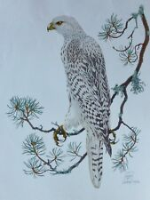 GAETAN DU CHATENET FALCON HAND SIGNED 255/260 Gyrfalcon  LITHOGRAPH FRENCH 30x22