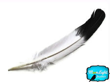 6 Pieces - BLACK TIP Tom Turkey Rounds Imitation Eagle Feathers