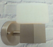 Lights Outside Alema Brushed Stainless Steel Wall Light with Opal Glass Shade