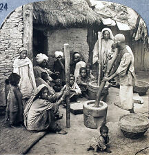 Keystone Stereoview of Shelling Rice in Kashmir, INDIA from the 1930's T600 Set