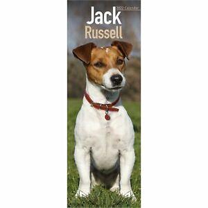 Jack Russell Calendar 2022 Dog Slimline SLIM 15% OFF MULTI ORDERS!