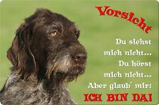 Deutsch DRAHTHAAR - A4 Alu Warnschild Hundeschild SCHILD Türschild - DDR 06 T2