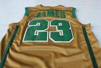 LeBron James #23 Fighting Irish Throwback Basketball Stitched Jersey | S-2XL