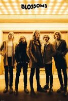 BLOSSOMS ~ LIGHTS GROUP ~ 24x36 Music Poster ~ New/Rolled!