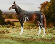 Breyer Traditional Horse Emerson Premier Club LAST 2018 Release
